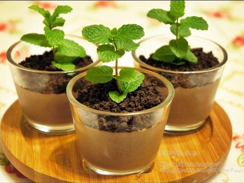 盆栽巧克力布丁