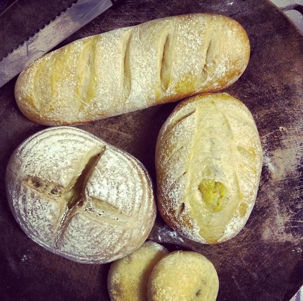 |Bread|你好香!軟地瓜麵包 小帝王大人