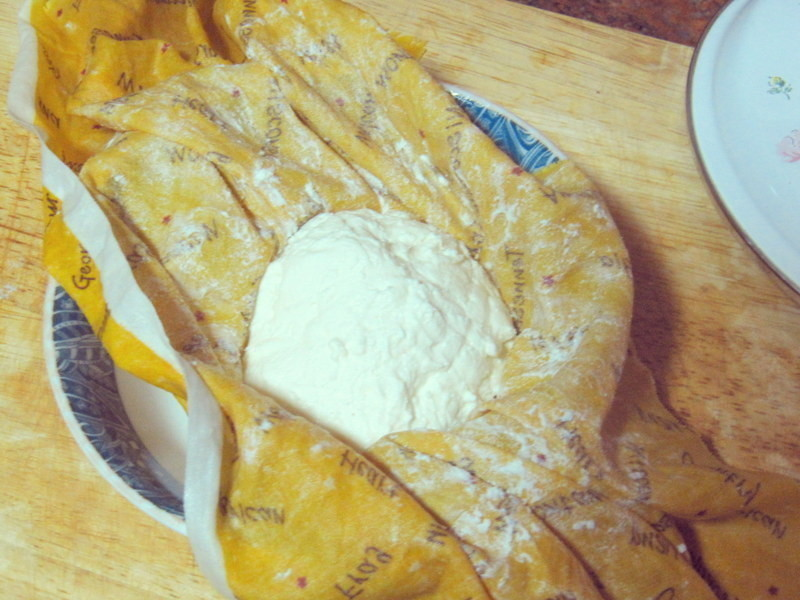 DIY Cream Cheese / 自製奶油起司