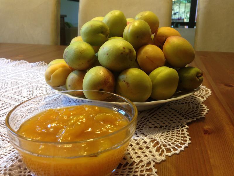自製果醬1--杏桃果醬
