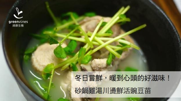 [綠藤芽食譜] 砂鍋雞湯川燙鮮活豌豆苗
