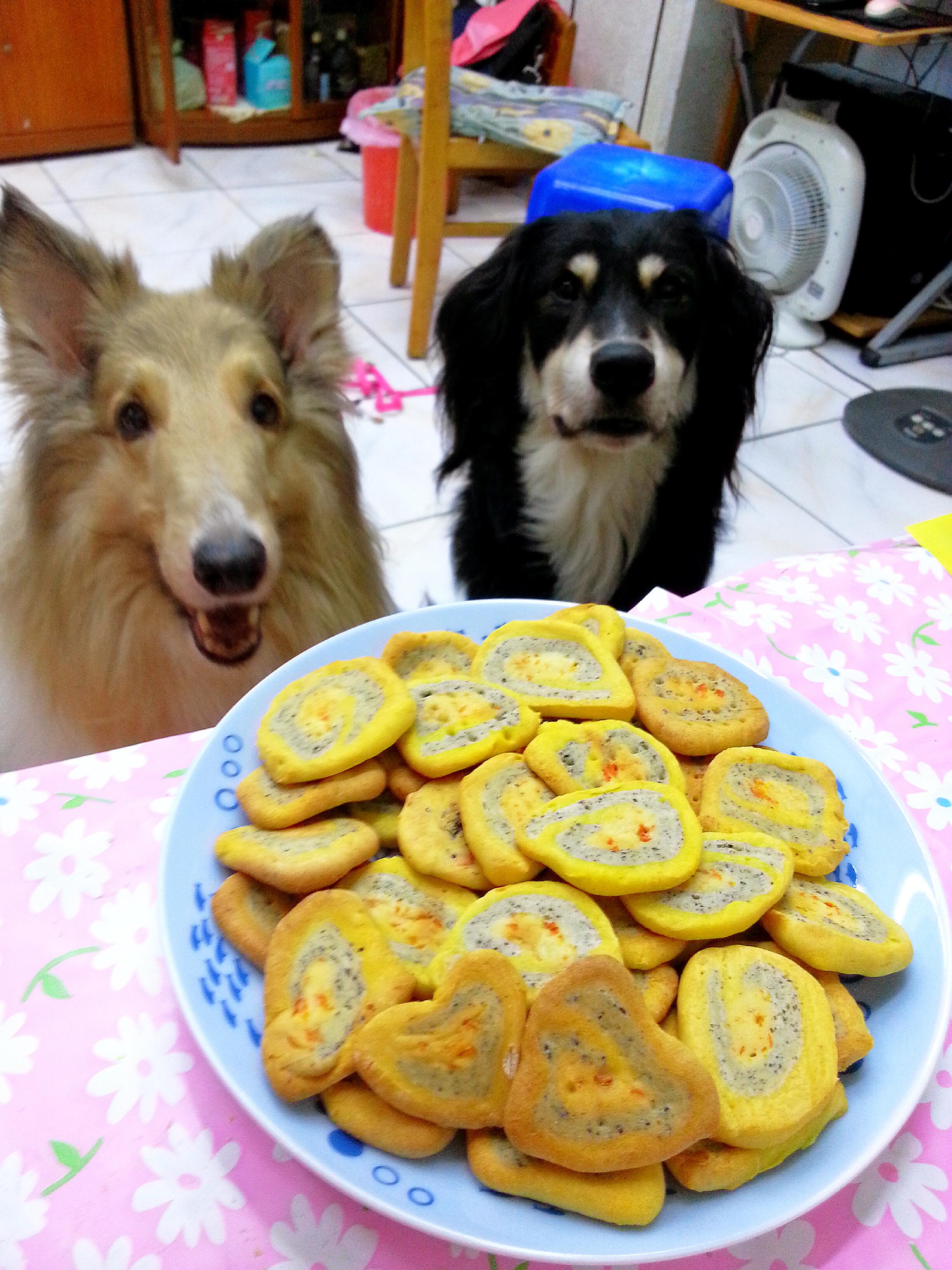 雙色圈圈餅-小烤箱