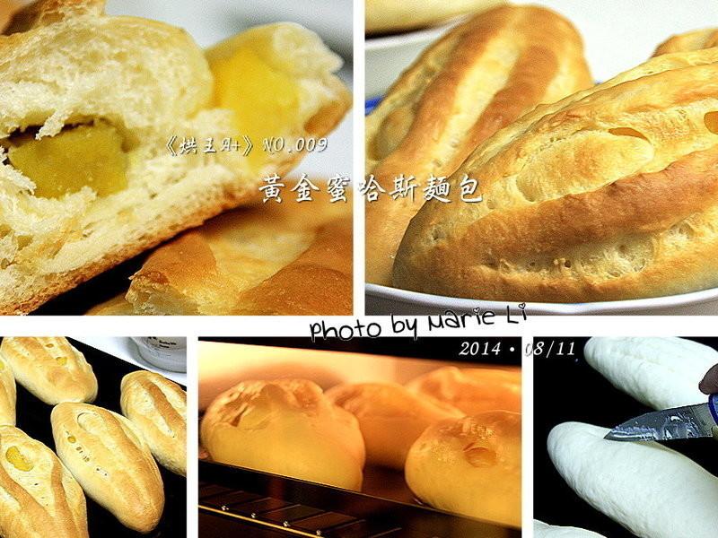 烘王A+料理簿:蜜黃金哈斯麵包《中種法》