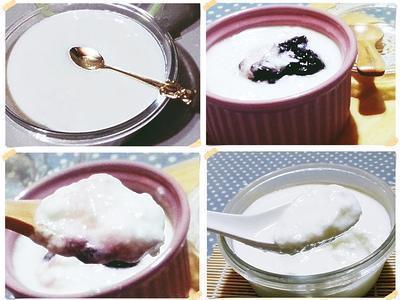 自製優格(免菌粉電鍋版)