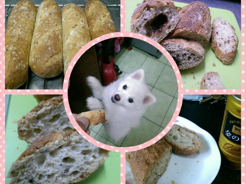 五穀雜糧蜂蜜麵包〈原味、巧克力〉