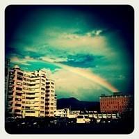 ♥香草天空