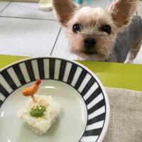 R-Ting 假日廚房