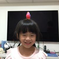 Pegi Chang