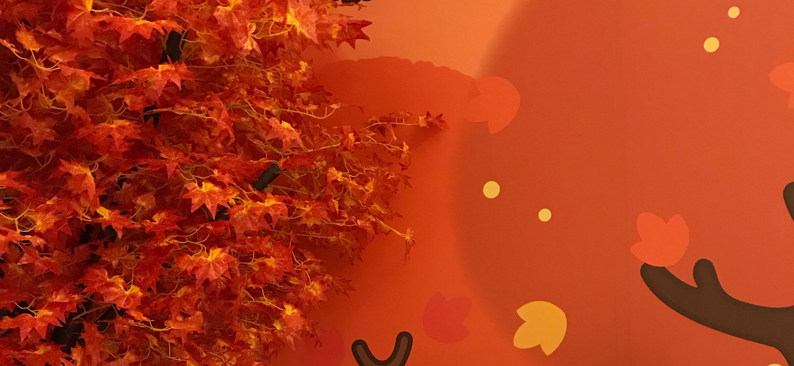 🍭炸蝦的美食星空 的個人封面